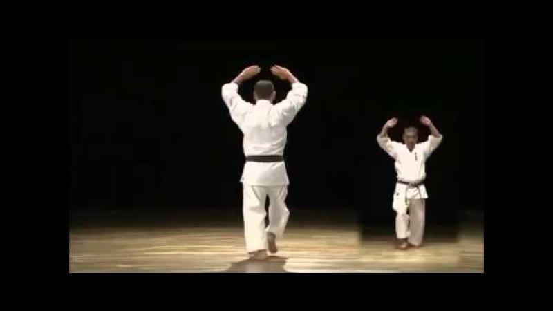 Matsumura no Passai - Yasuhiro Uema Sensei