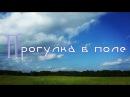 Mashulya Fikus Прогулка в поле