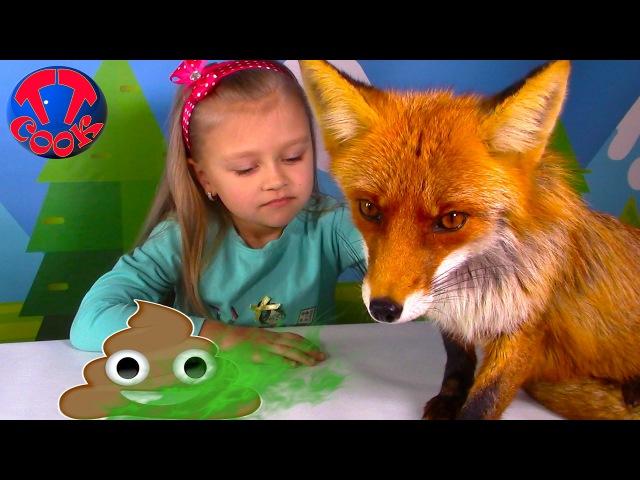 Челлендж Обычная еда против Какашки от Лисы Видео для Детей