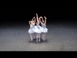 Веселые приколы! Самый смешной балет