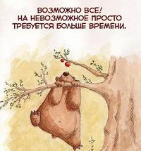 Серега Медведь
