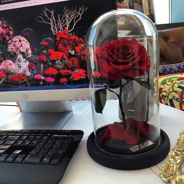 Как сделать вечные цветы