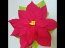 DIY- Paper Poinsettia flowers by crepe paper- Làm hoa trạng nguyên bằng giấy nhún