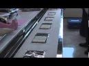 Suzumo sushi industrial production line SVR SAE Single Nori Type