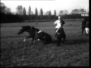 Czechoslovakian Steeplechase (1966)