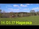 14.05.17 Нарезка дня😄 Карьер, прыжки и трюки - шикарный день!😇