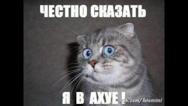 Всё уже сказано EBALA FM АНДРЕЙ КУПЦОВ СВОБОДНОЕ ОБЩЕНИЕ 18