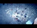 Tim Bendzko - Sag einfach Ja (Offizielles Video)