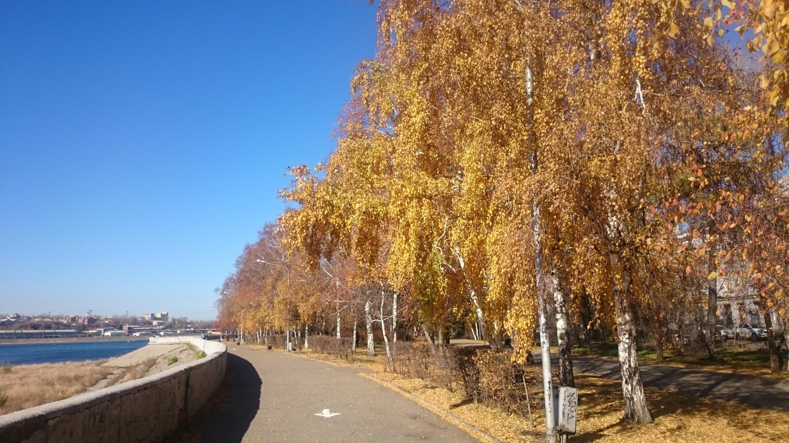 Прикольные картинки про осень с добрым утром