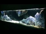 3D объемный фон для аквариума -4