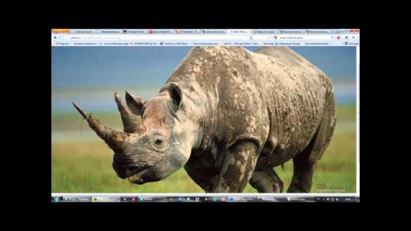 26 урок - Продвинутый моделинг в 3dsMax и Mudbox (Динозавр) » Freewka.com - Смотреть онлайн в хорощем качестве