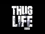2Pac feat. Thug Life, Nate Dogg - How Long Will They Mourn Me