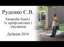 Руденко Є.В. Хвороби бджіл та їх лікування (Дубрава 2016)