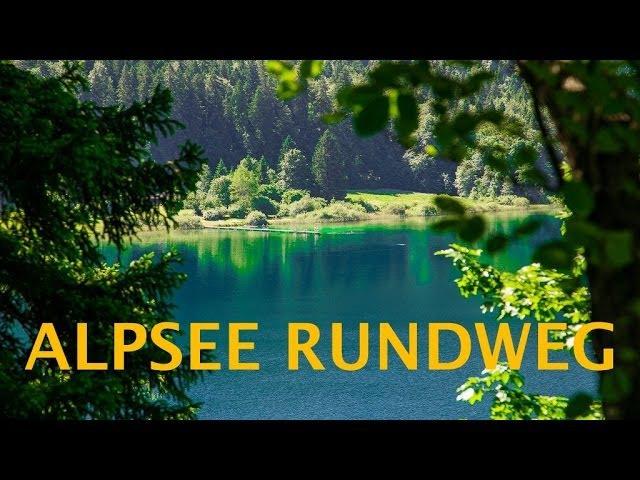 Alpsee Rundweg