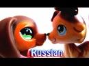 Littlest Pet Shop Popular Episode 18 Саванна RUS Русская озвучка