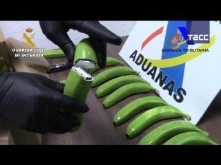 В Испании преступники попытались провезти 17 кг кокаина в поддельных бананах