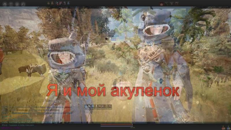Black Desert Online - Турнир - IDclev