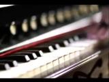 Jem  Its Amazing  (music video)   Dramatico   ATO Records