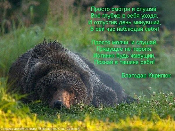 Медведь помощник Велеса