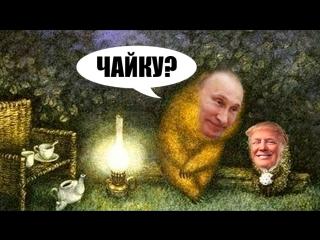Путин и Трамп впервые поговорили по телефону  как президент с президентом