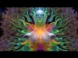 ☺♥☻самадхи. майя, иллюзия обособленного я