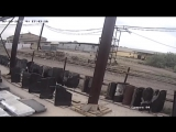 В Оренбурге водитель на «Жигулях» переезжает собаку по кличке Джек