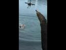 прыжок веры номер1