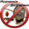 Murmansk Dezservis
