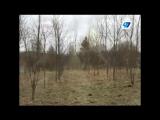 Памяти 6 роты. 17 лет спустя родители десантников впервые на месте гибели сыновей. В Аргунское ущелье Чечни на высоту 776 поехал