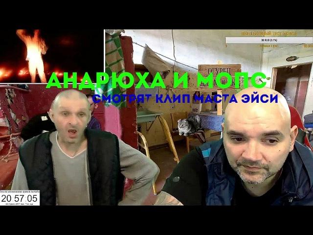 Привет от МОПСА Маста Эйси Мопс и Андрюха смотрят клип Маста Эйси и Синэ по люб