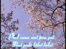 Учим песни Шри Чинмоя. Phul phute uthe с субтитрами