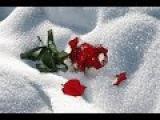 На белом покрывале января. Олег Хромов. Автор ролика Тамара Ветошева.