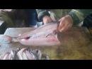 Рыбалка в Якутии Юкола.ТАК её готовят наши братья на участке ,где и ловят рыбу.