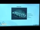 22-Sitoplazma ve Organeller 2 - BİYOLOJİ DERSLERİ - YGS - LYS