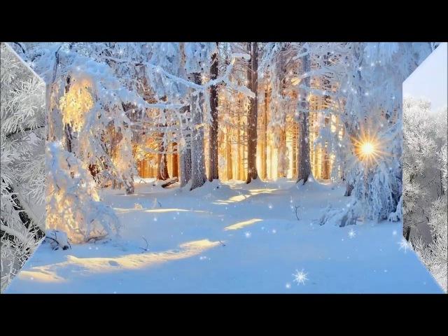 С Рождеством тебя Белые крылья
