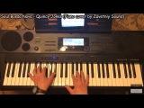 Soul Bossa Nova - Quincy Jones + Notes (Cover by Zavetniy Sound)