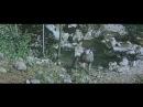 XVI - 1-я пол.XIX вв. - Прикарпатские опришки против крепостного рабства