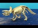 Раскопки динозавра. Игрушка раскопки динозавра Трицератопса. Я раскапываю игру ...