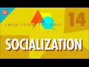 Socialization: Crash Course Sociology 14