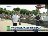 Ударил журналиста НТВ в прямом эфире, ЖЕСТЬ, День ВДВ 2017