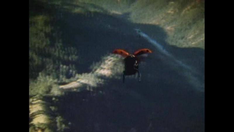 BBC. Империя чужих: Насекомые 4 серия из 6 / Alien Empire (2001)