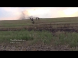 Сепари гадали що вони безсмертні (відео ДНР)