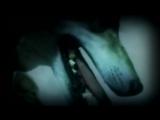 SlayD - Волчья стая