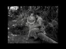 Хлеб, любовь и фантазия  Pane, Amore e Fantasia (1953)