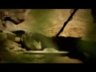 History «Легенда гор Суеверия (01). Тайны потерянной карты» (Реальное ТВ, 2014)