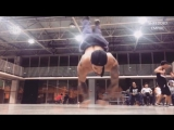 Повелитель гравитации Pivet Madkilla