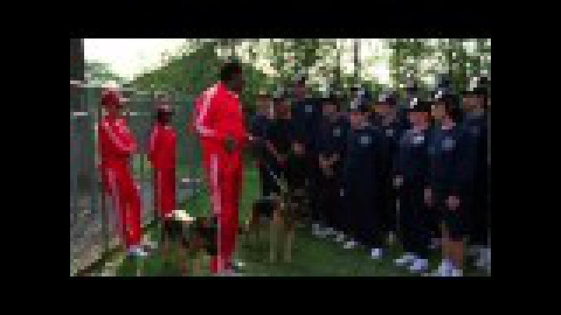 Полицейская академия 3: Переподготовка. Сидеть!