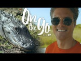On the go with EF #20  Filip explores the Florida Everglades