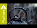 Waitrose Christmas TV ad 2016 | #HomeForChristmas