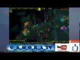 TOP-5 G_A_M_O_R_A_TV